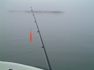 Havsöringsfiske på Åland